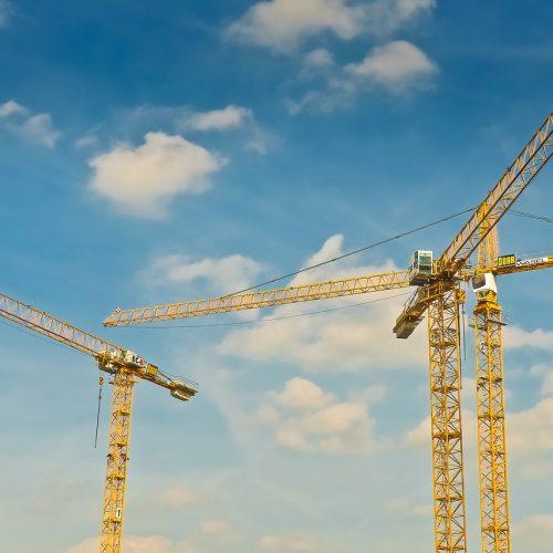 cranes-1758459_1280